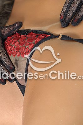 Luna 962960104, escort en Santiago de Chile